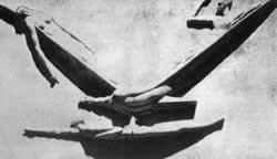 """""""Ave del Retorno"""", también llamado """"El vuelo del Genio"""". Tótila Albert"""